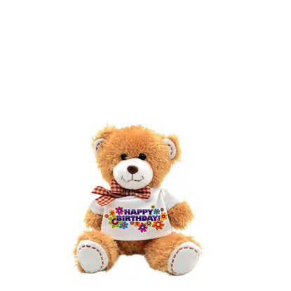 Picture of TEDDY BEAR - 18cm (with T-Shirt)